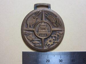 憲法記念メダル